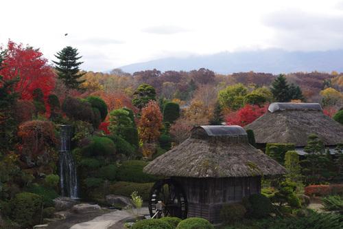 忍野八海の秋