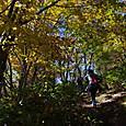 八子ケ峰への登山道