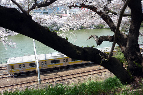 外堀と総武線各駅電車