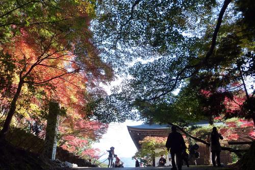 神護寺の光と影