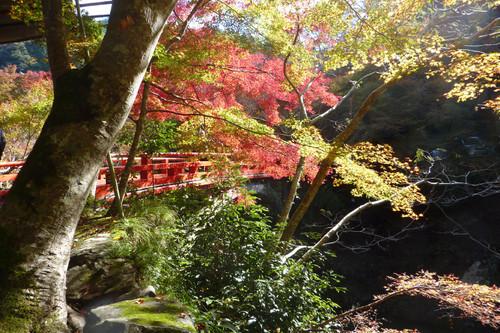 西明寺入り口の指月橋