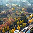 小石川後楽園を見下ろす