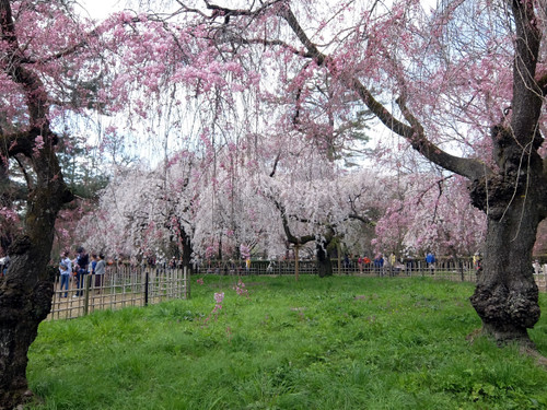 京都御苑 旧近衛邸跡