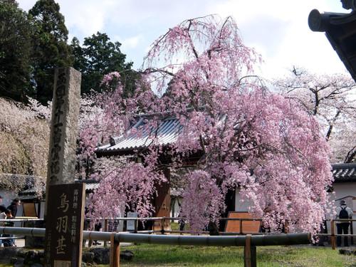 醍醐寺正門